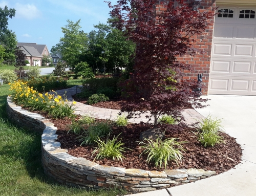 Do it yourself landscape design camden landscape group for Do it yourself landscape design
