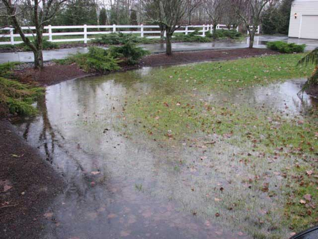 Landscape Drainage Problems