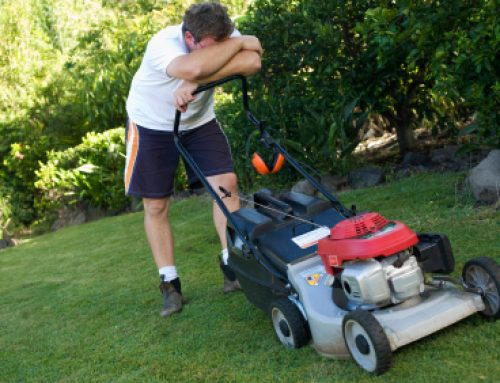 Landscape Maintenance Service – Caring For Your Lawn