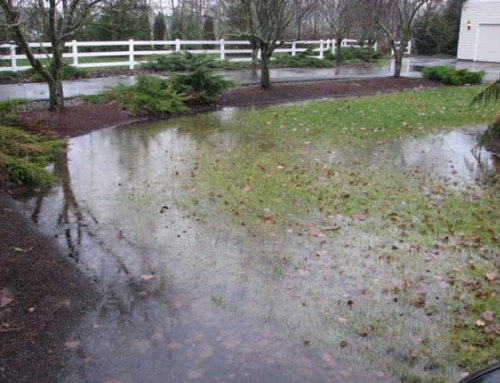 Landscape Drainage… Moving Water Away From Your Home & Landscape
